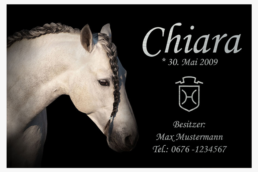 individuelles boxenschild alu brushed letters individual horses. Black Bedroom Furniture Sets. Home Design Ideas