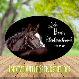 Spindschilder